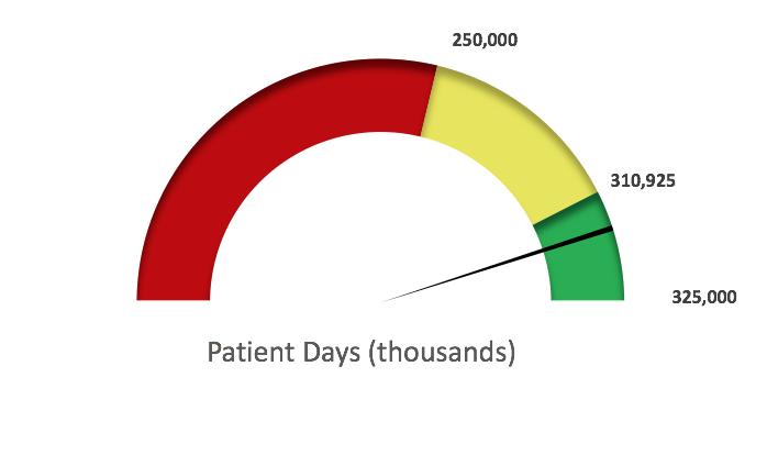 patient days fy19.png